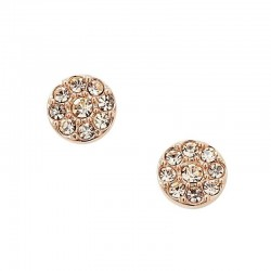 Buy Women's Fossil Earrings Vintage Glitz JF00830791