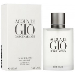 Giorgio Armani Acqua di Giò Perfume for Men Eau de Toilette EDT 100 ml