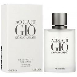 Giorgio Armani Acqua di Giò Perfume for Men Eau de Toilette EDT Vapo 100 ml