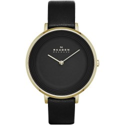 Buy Women's Skagen Watch Ditte SKW2286